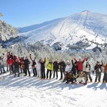 A BEGINNERS GUIDE TO SNOWSHOEING